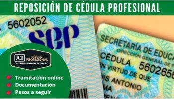 Reposición de Cédula Profesional