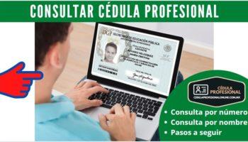 Consulta de Cédula Profesional Por Número y Nombre