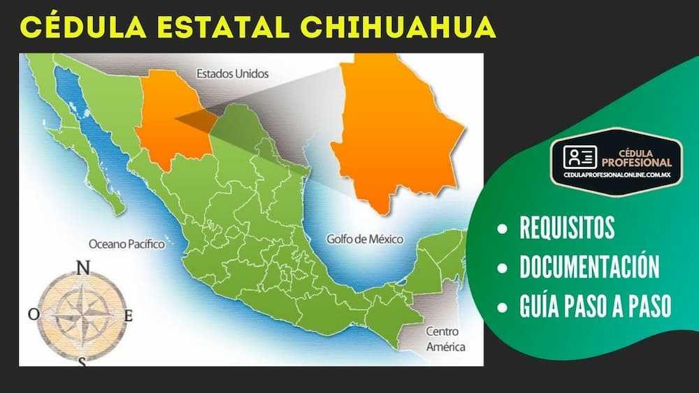 registro estatal de profesiones chihuahua